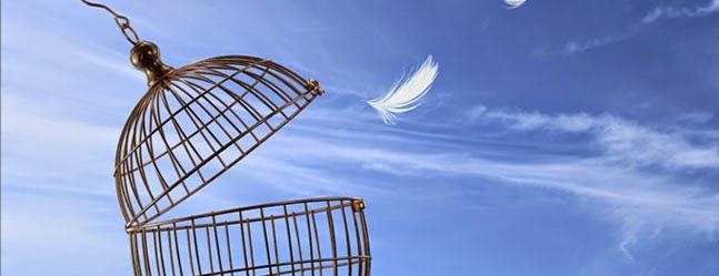 Libertad de tuiteo