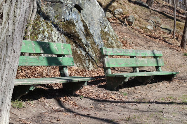 two low-slung wooden park benches in the late afternoon sun