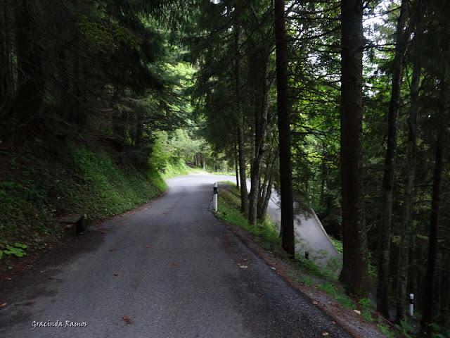 passeando - Passeando pela Suíça - 2012 - Página 9 DSC02341