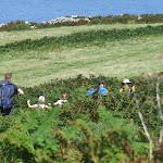 Cornwall August B.H 2010