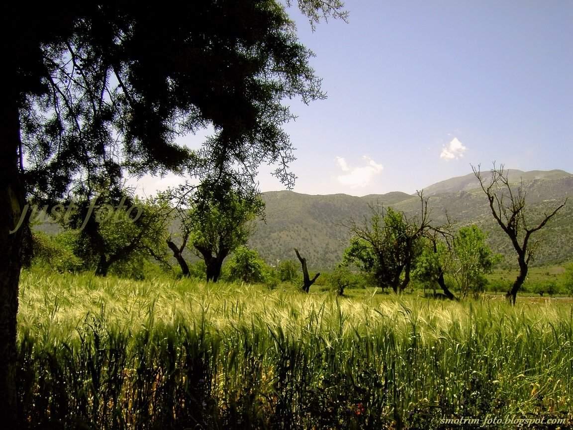 Крит плато Лассити фото