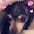 Zeta Watts avatar image