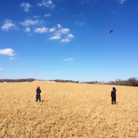 kids flying kites in farm field