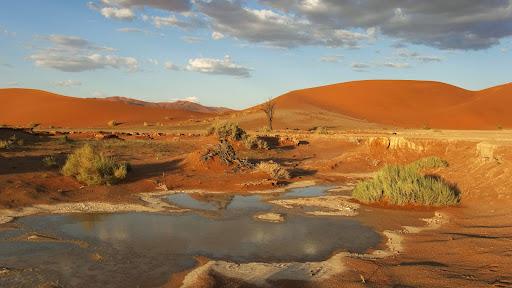 Namib-Naukluft National Park, Namibia, Africa.jpg