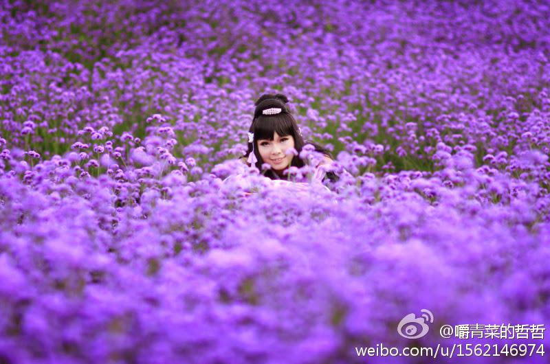 Nữ hiệp Vạn Hoa dạo chơi giữa rừng hoa - Ảnh 5