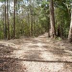 Kangaroo Point Road (364265)
