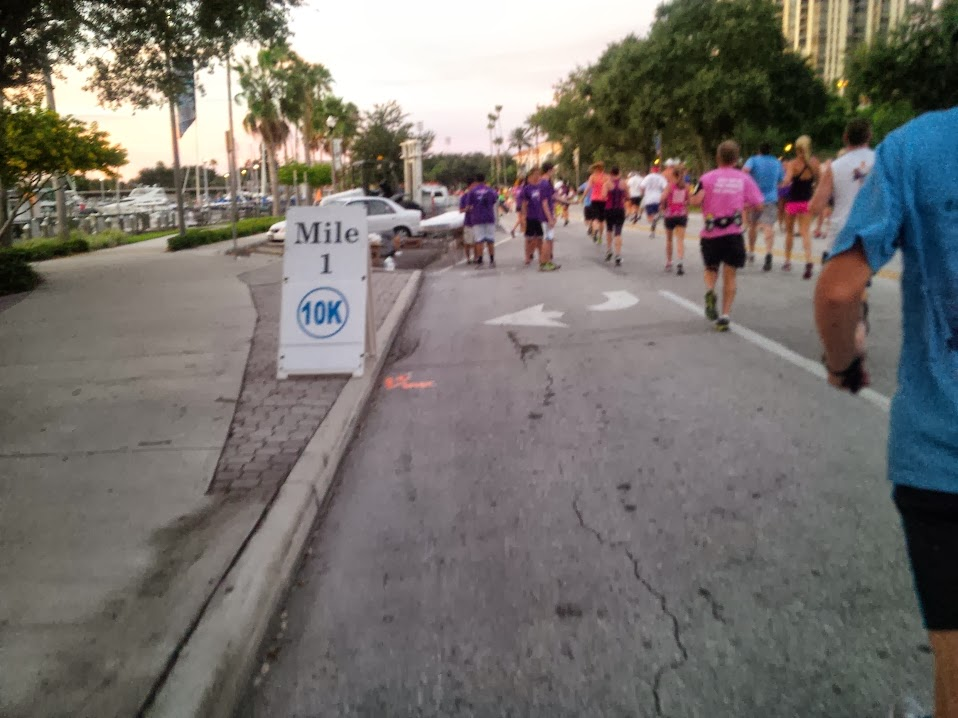 IMG 00001058 Race for the Cure 15K Challenge Recap