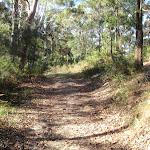 Walking along split rock management trail (239183)