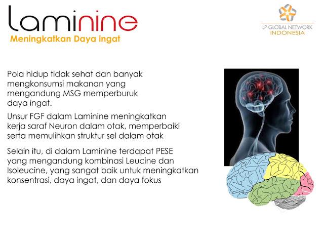 lam2 Laminine Herbal Alami Untuk Mengatasi Ketergantungan Obat & Ketagihan