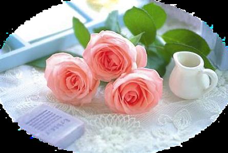 Resultado de imagem para tubes de floreres
