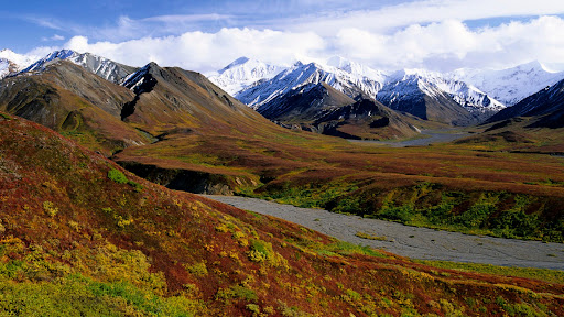 The Alaska Range and Tundra, Denali National Park, Alaska.jpg