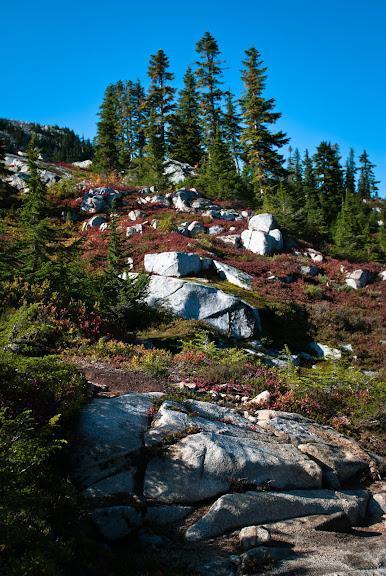 Snoqualmie NF -- Granite Mountain..