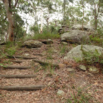 Steps on Graves Walk (227035)