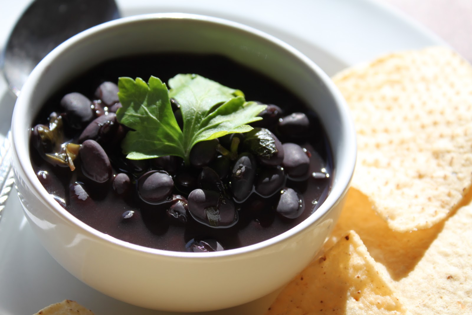 Meatless Meals for Meat Eaters: Black Bean Soup