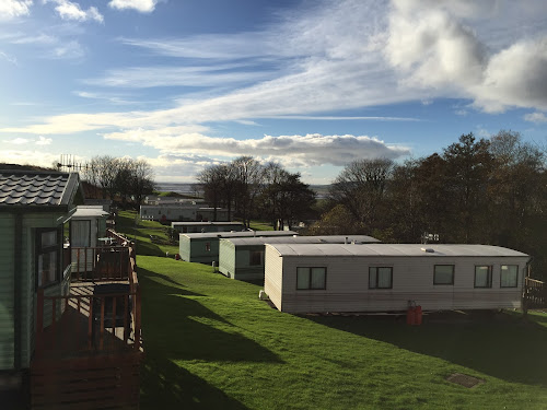 Camping  at Longlands Caravan Park