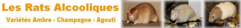 Les Rats Alcooliques
