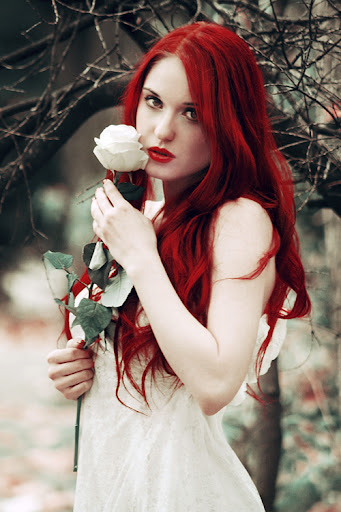 Red Rose, de fhrankee