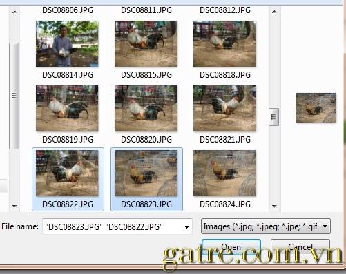 [Hình: Gatre.com.vn-uphinh2.jpg]