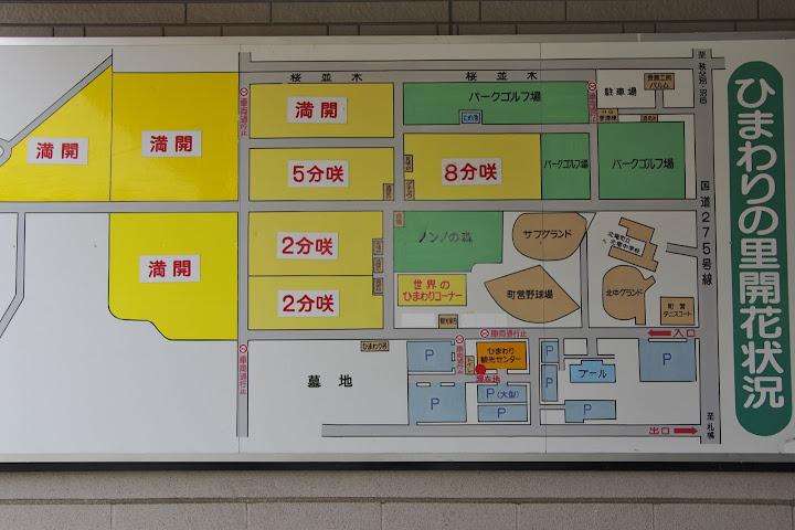 写真:8月4日(土)09:00頃