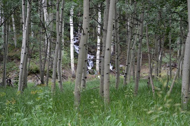 West Snowmass Creek