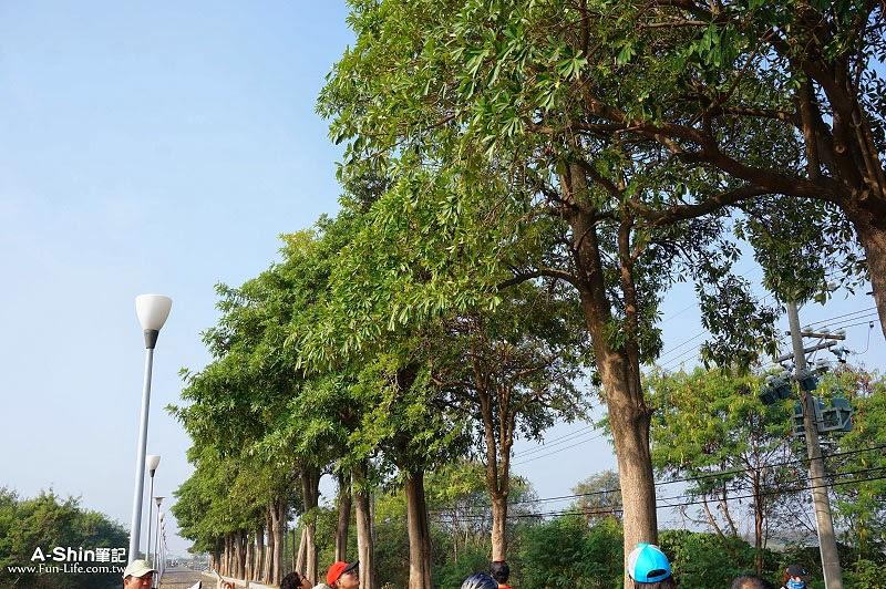 台江國家公園自行車道-6