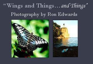Wings and Things...and Things: The Photography by Ron Edwards