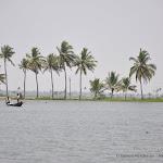 """Photo de la galerie """"Le Kérala et ses backwaters"""""""