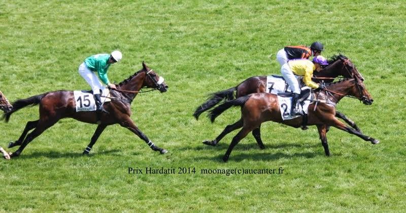 Photos Auteuil 8-06-2014  IMG_1710