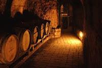 υπόγειο με βαρέλια,βαρέλια οίνου,ωρίμανση οίνου,κελάρι,cellar with barrels, wine barrels, matured wine, cellar,