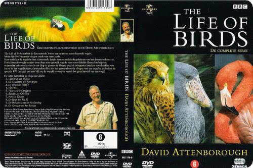 La vida de las aves (David Attenboroungh) [BBC][DVDRip][Espa�ol][2002][10/10]
