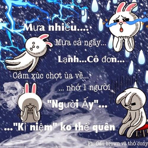 Tâm trạng của Cony trong mưa