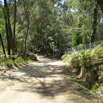 Cullamine Rd near Terrey Hills (27263)