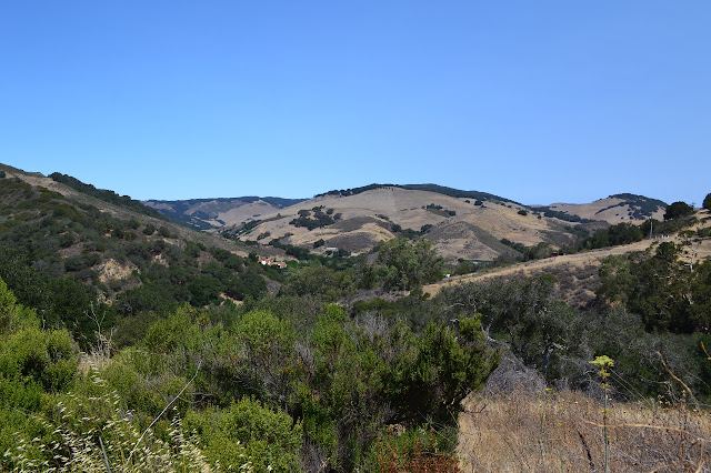 hills off toward Nojoqui