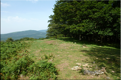 Descenso de Motxotegi (Hego)
