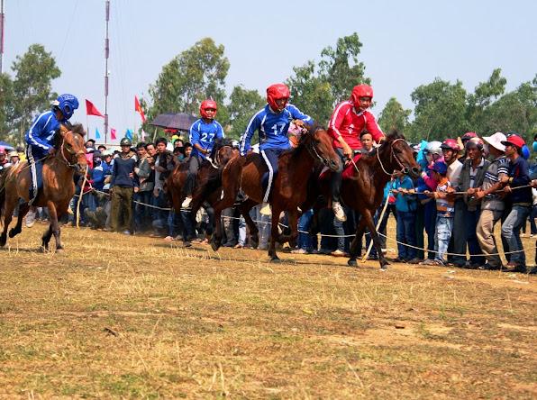 Các kỵ sĩ nông dân đang cưỡi ngựa một vòng chào khán giả trước cuộc đua tài