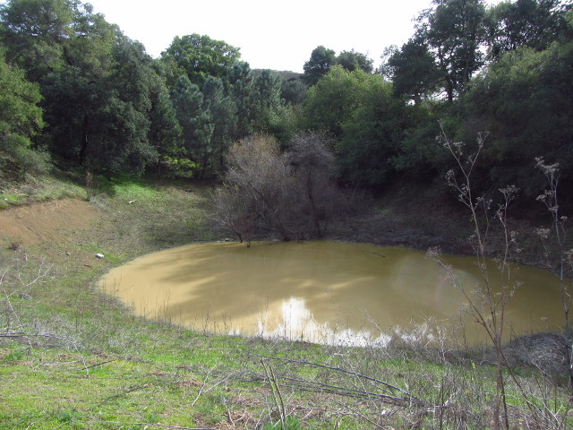natural pond near the top of the old road
