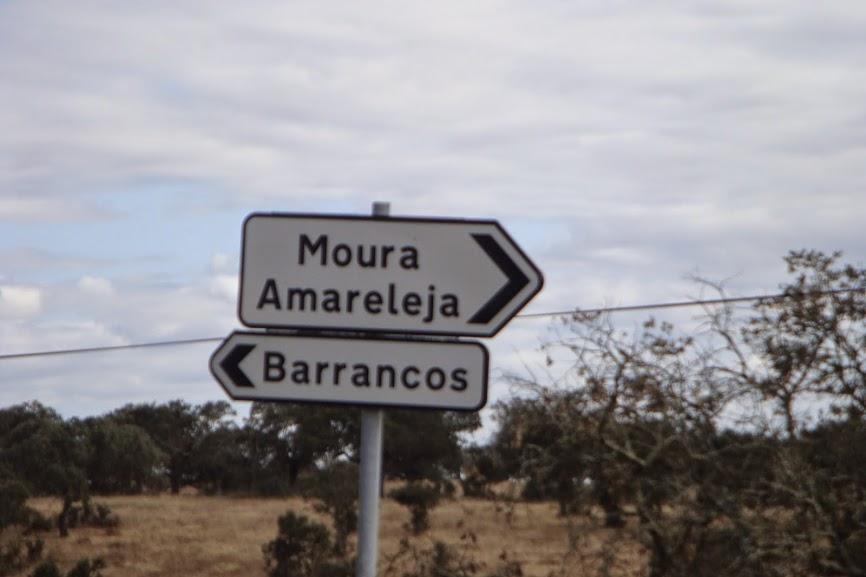 De Alcobaça ao ALLgarve são 590 Kms... DSC07486