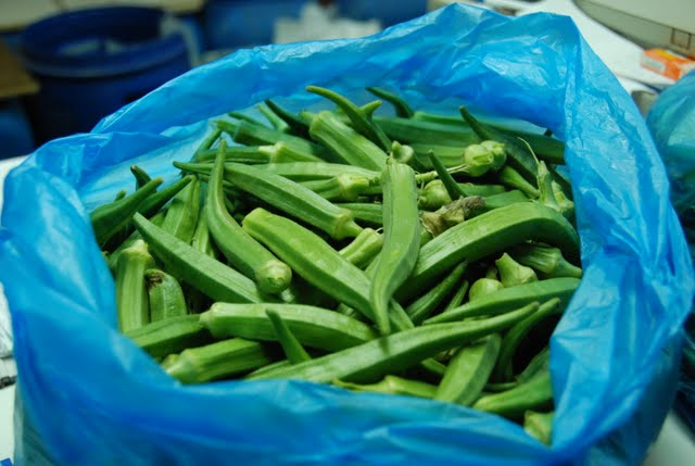 okra, ramle little India, ramle market