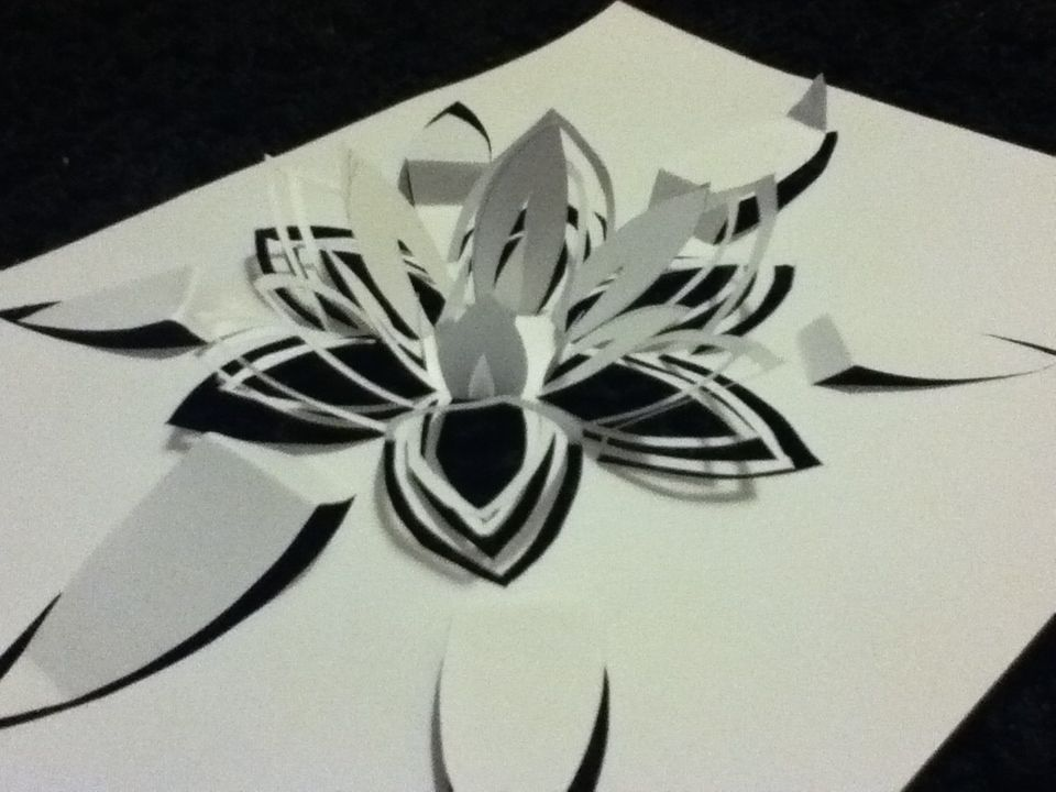 Kirsty weeks graphic designer my paper designs i simply cut out the flower shape and then folded up parts which i wanted to stand up this made the sculpture 3d very mightylinksfo