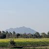 Dil Chattha