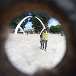 johinth pathi picture