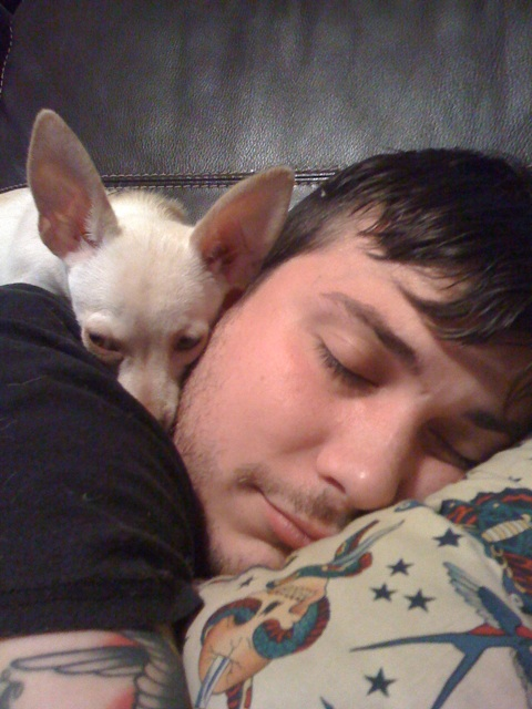 Frank Iero and a chihuahua