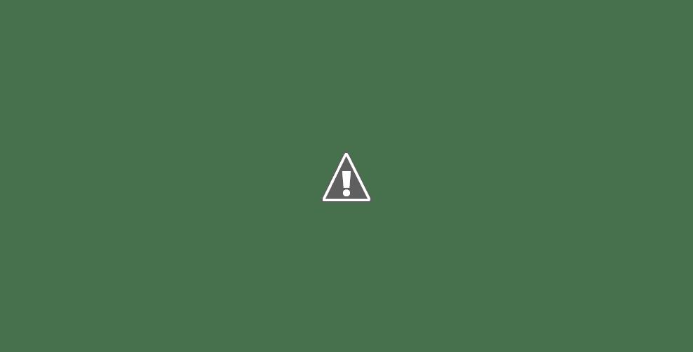 Parque Miguel Lillo en Necochea