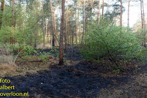 nacontrole  bosbrand Overloon 18-04-2014 (5).jpg