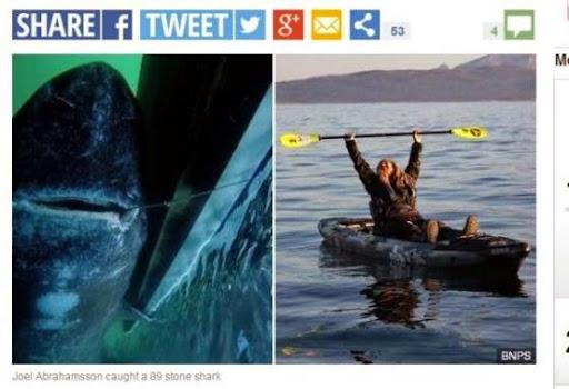 瑞典「猛男」一竿釣起565公斤巨鯊,刷新世界紀錄
