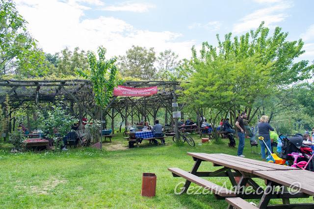 Stella'da mangal yakıp piknik yapanlar, Polonezköy