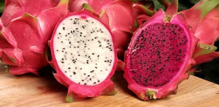 2 jenis dragon fruit