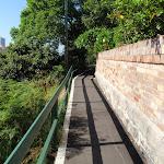 Clear walking tracks (258578)