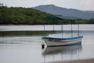 Tamarindo Estuary Tour Boat - Guanacaste, Costa Rica