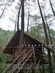 Rumah Pohon Masigit Kareumbi